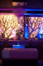 Colorado Event Productions